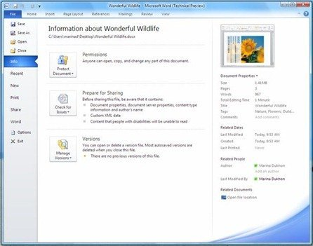 microsoft office 2010 backstage preview