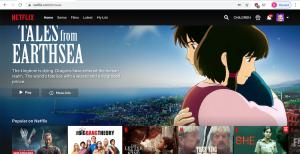 Netflix Party 4