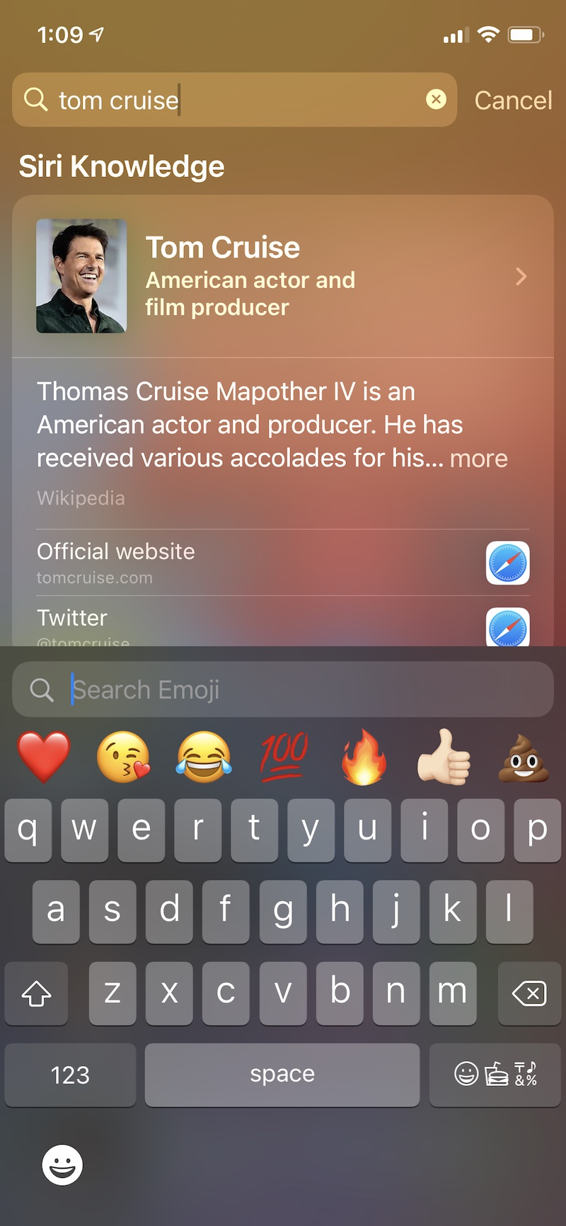 iOS 14 Emoji Search